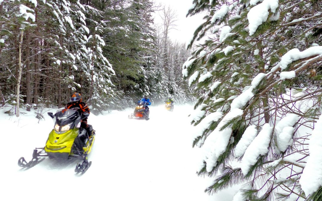 Snowmobile Cottage Country Ontario Tour
