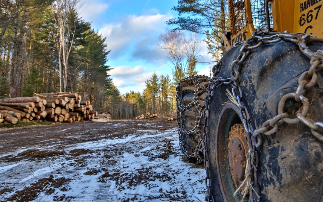 Snowmobiling Active Logging Roads How To Tips